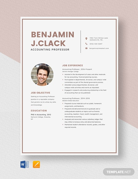 Accounting Professor Resume Template
