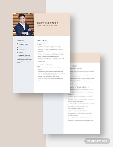 Accounting Support Resume Download