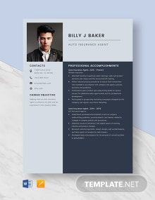 Auto Insurance Agent Resume Template