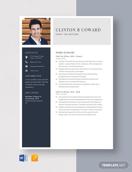 Chief Tax Officer Resume Template