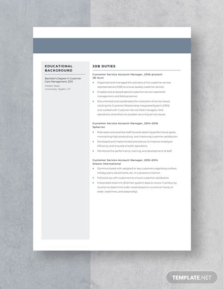 Customer Service Account Manager Resume Template