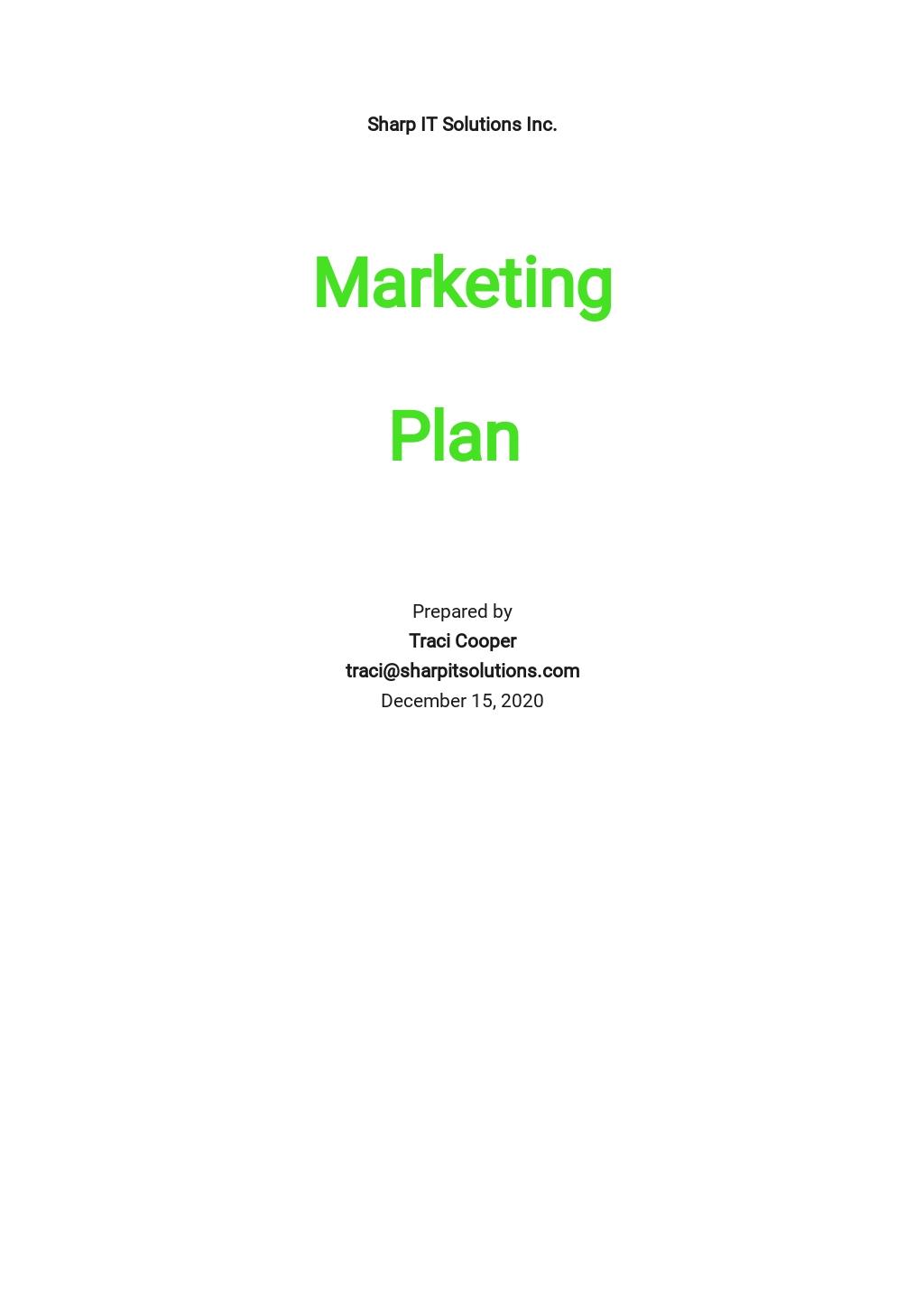 Saas Marketing Plan Template