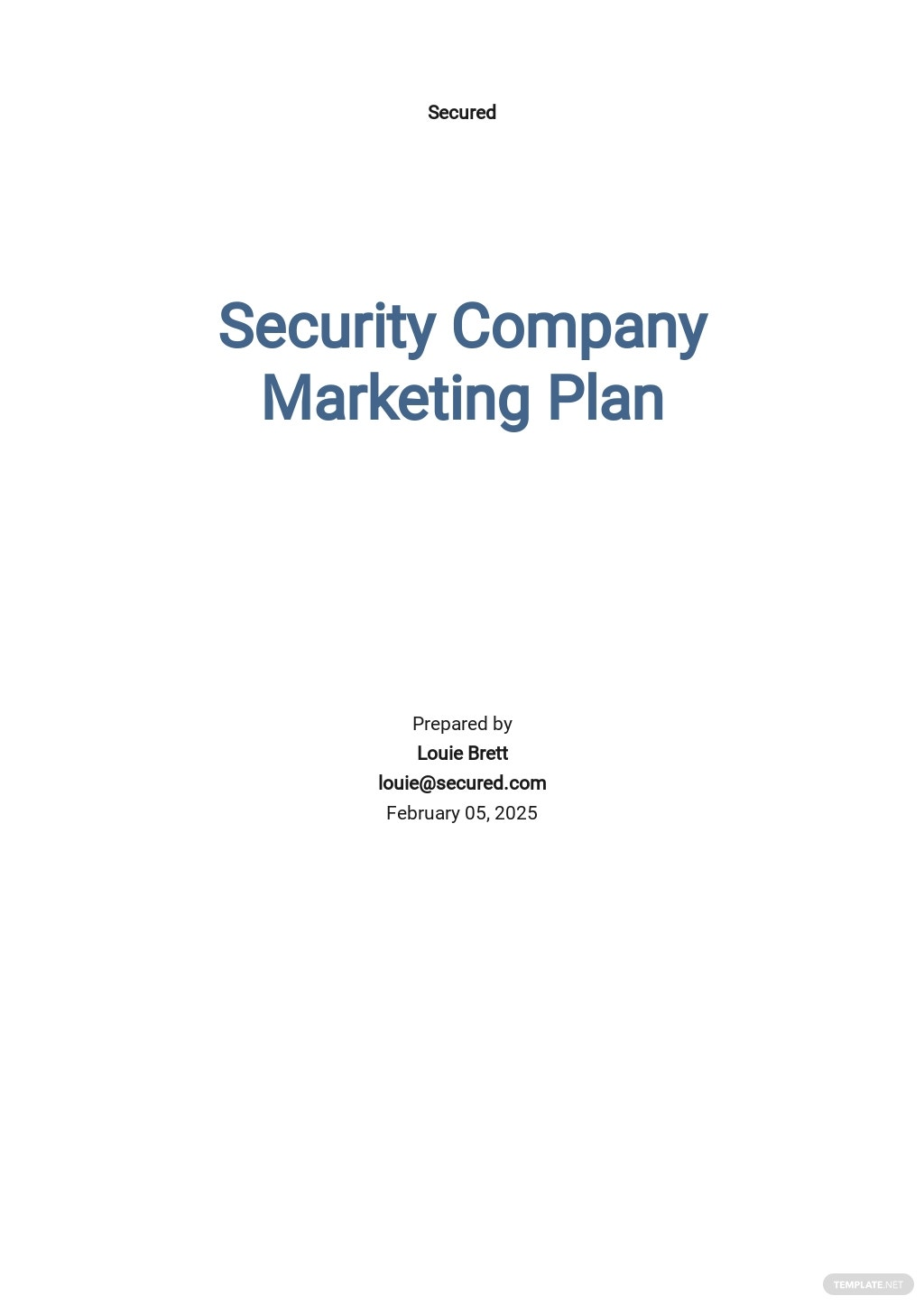 Security Company Marketing Plan Template [Free PDF] - Google Docs, Word, Apple Pages