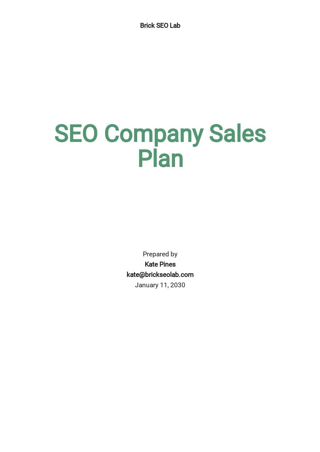 SEO Agency/Company Sales Plan Template