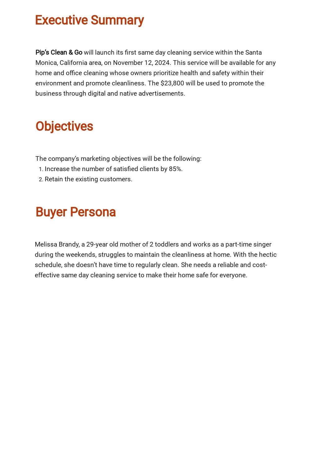 Service Marketing Plan Template 1.jpe