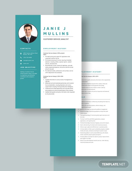 Customer Service Analyst Resume Download