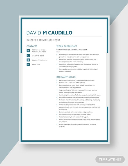 Customer Service Assistant Resume Template