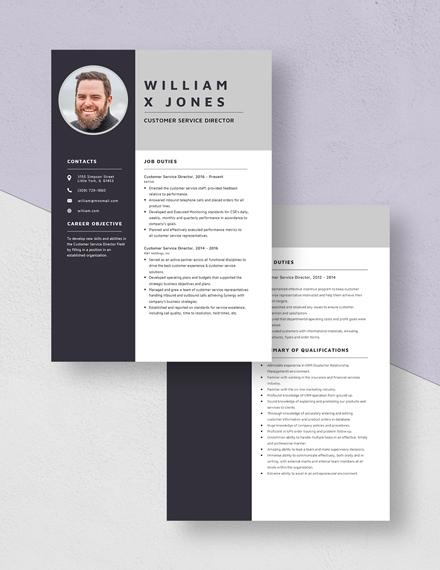 Customer Service Director Resume Download