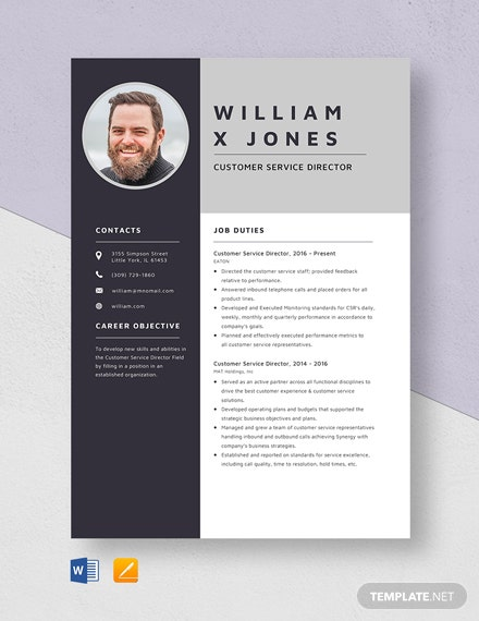 Customer Service Director Resume Template