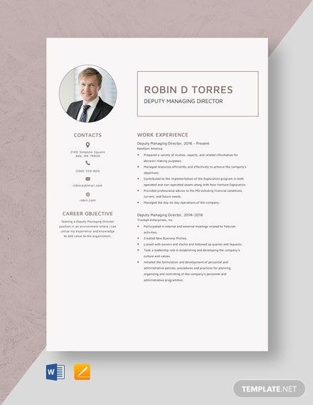 Deputy Managing Director Resume Template