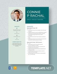 Deputy Project Manager Resume Template