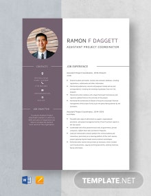 Assistant Project Coordinator Resume Template