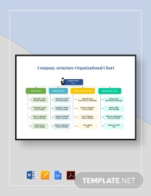 Company Structure Organizational Chart Template