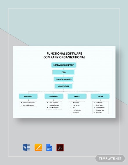 Functional Software Company Organizational Chart Template