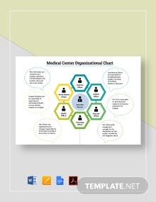 Medical Center Organizational Chart Template