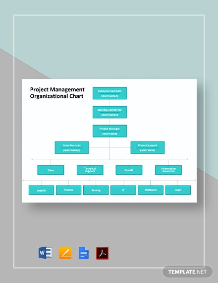 Project Management Organizational Chart Template