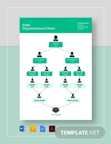 Sales Organizational Chart Template