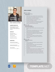 Chief Technical Officer Resume Template