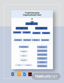 Trade Enterprise Organizational Chart Template
