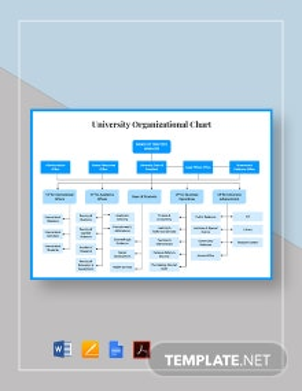University Organizational Chart Template