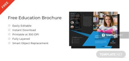 Free Educational Brochure Templates Download ReadyMade Templatenet - Education brochure templates