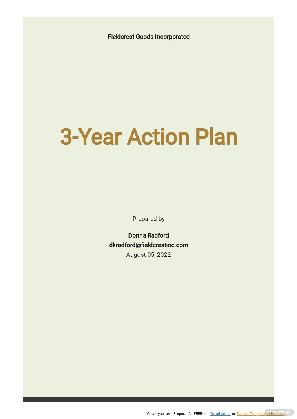 3 Year Action Plan Template.jpe