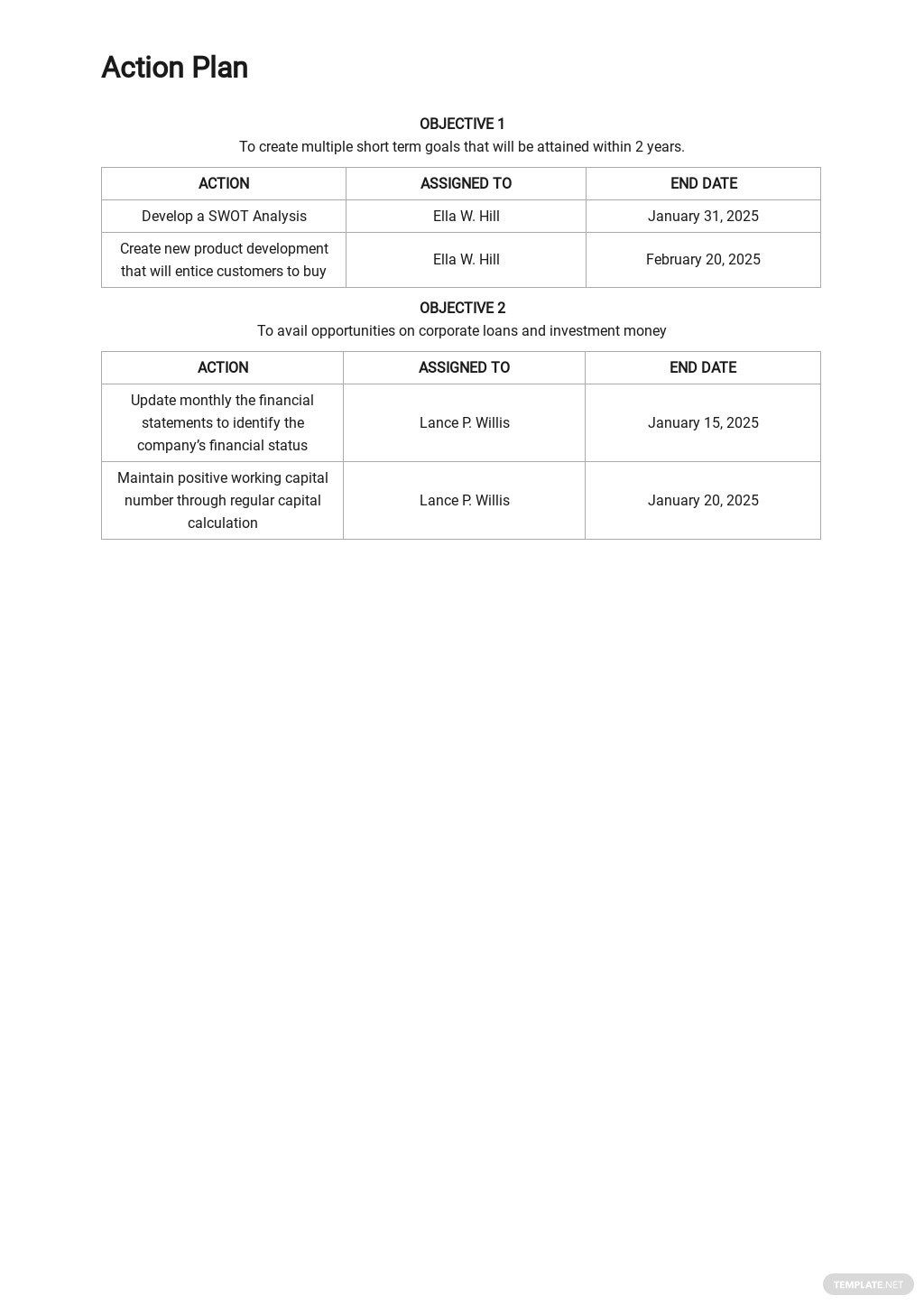 5 Year Action Plan Template 2.jpe
