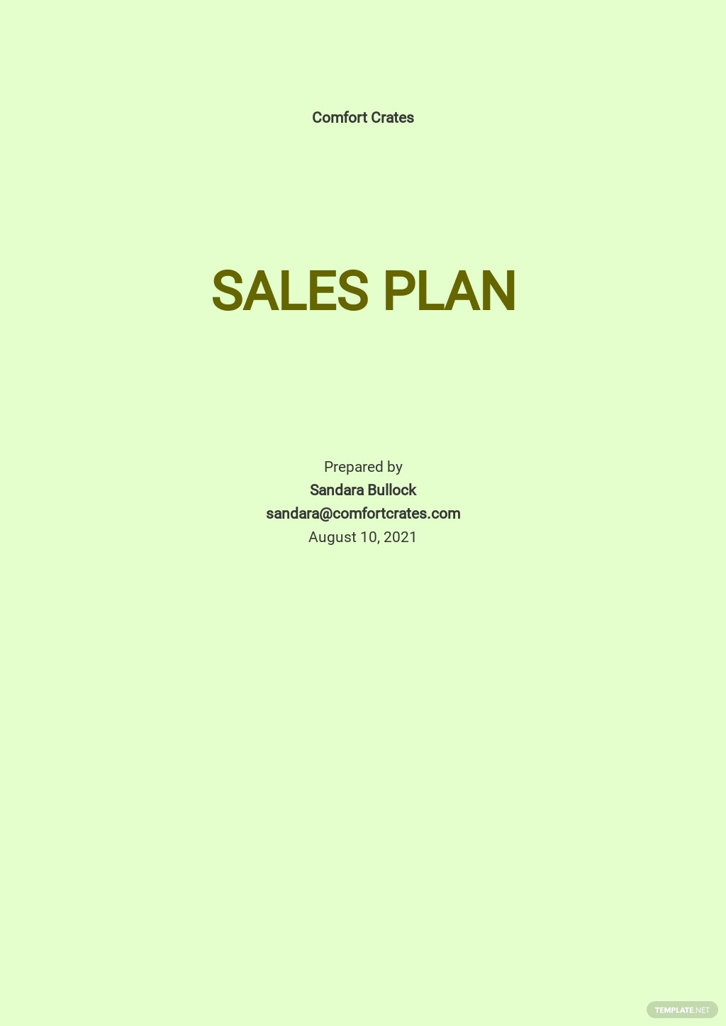Basic Sales Plan