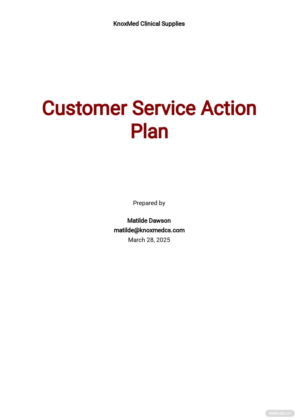 Customer Service Action Plan Template