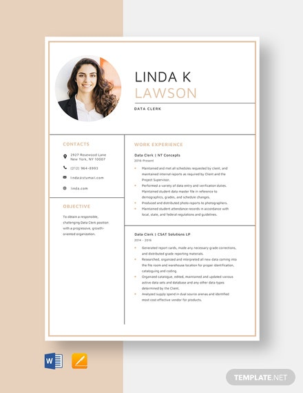 Data Clerk Resume Template