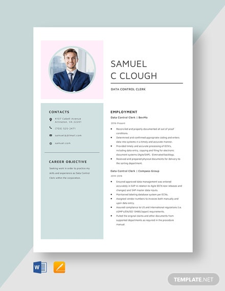 Data Control Clerk Resume Template