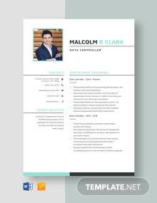 Data Controller Resume Template