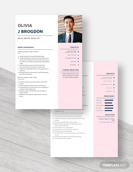 Data Entry Analyst Resume Download