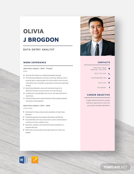 Data Entry Analyst Resume Template