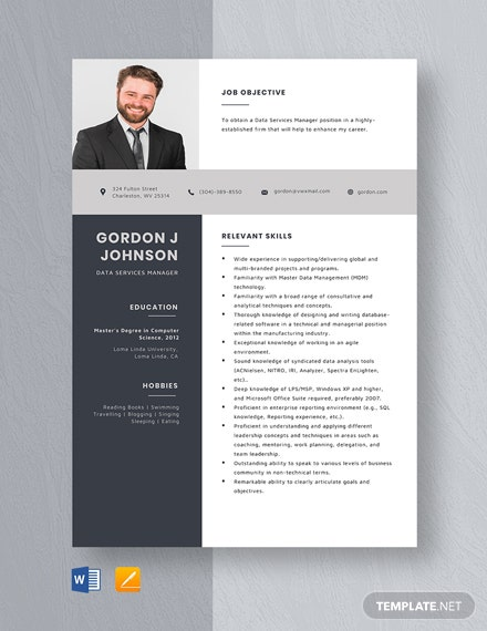 Data Services Manager Resume Template