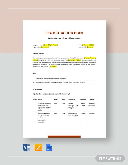 basic project action plan