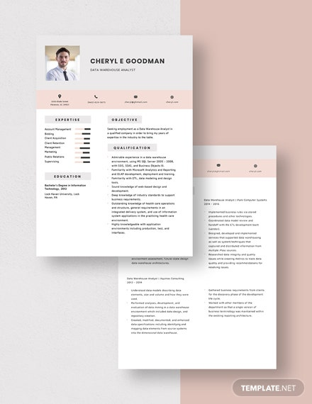 Data Warehouse Analyst Resume Download