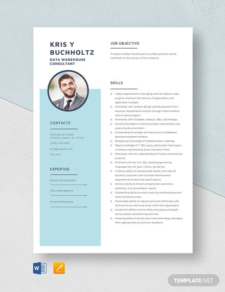 Data Warehouse Consultant Resume Template