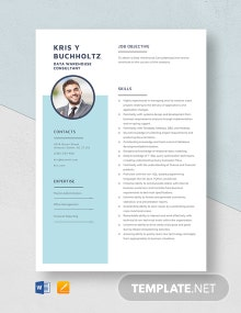 Data Warehouse Consultant Resume Template
