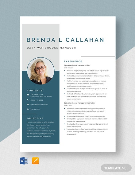 Data Warehouse Manager Resume Template