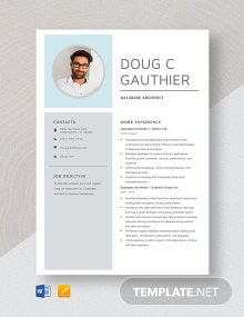 Database Architect Resume Template