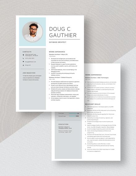 Database Architect Resume Download