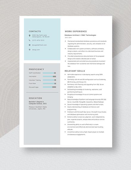 Database Architect Resume Template