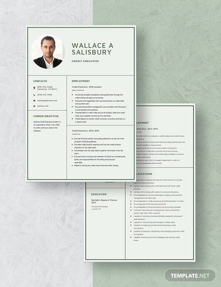 Credit Executive Resume  Download