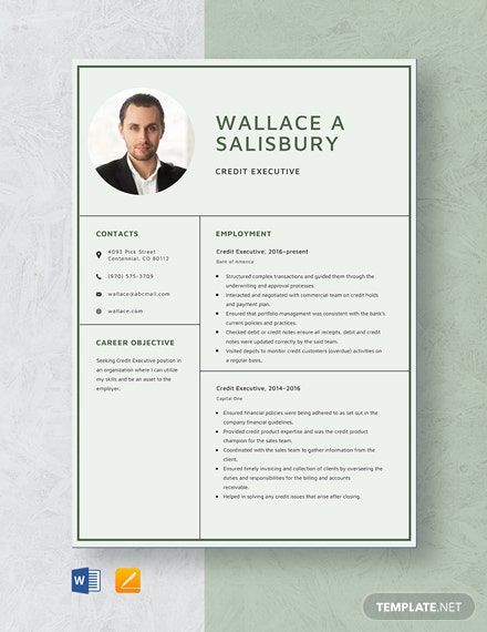 Credit Executive Resume Template