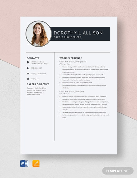 Credit Risk Officer Resume Template