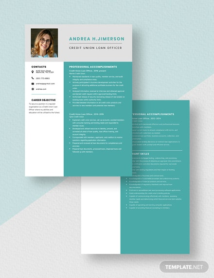 Credit Union Loan Officer Resume  Download