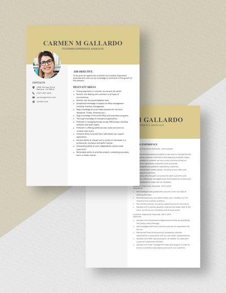 Customer Experience Associate Resume Download
