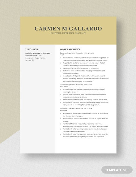 Customer Experience Associate Resume Template