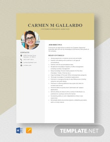 Customer Experience Associate Resume Template